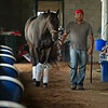 Caption: walking shedrow<br /> Midnight Bisou at Keeneland on May 2, 2020 Keeneland in Lexington, KY.