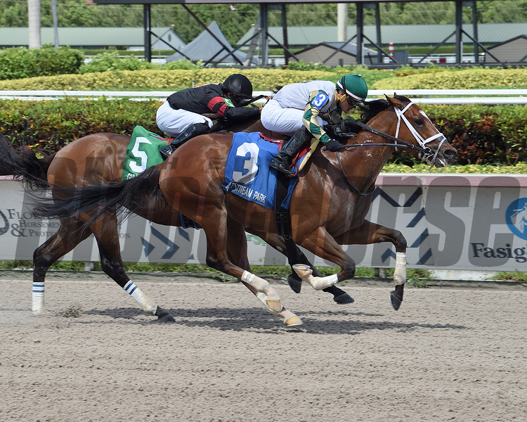 Double Crown wins the 2020 Roar Stakes at Gulfstream Park<br /> Coglianese Photos/Lauren King