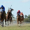 Micheline wins the 2020 Honey Ryder Stakes at Gulfstream Park <br /> Coglianese Photos/Ryan Thompson