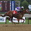 Stimulus Check - Maiden Win, Saratoga, August 19, 2020<br /> Coglianese Photos