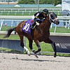 Unrighteous wins a maiden special weight Sunday, May 17, 2020 at Gulfstream Park. Photo: Coglianese Photos/Ryan Thompson