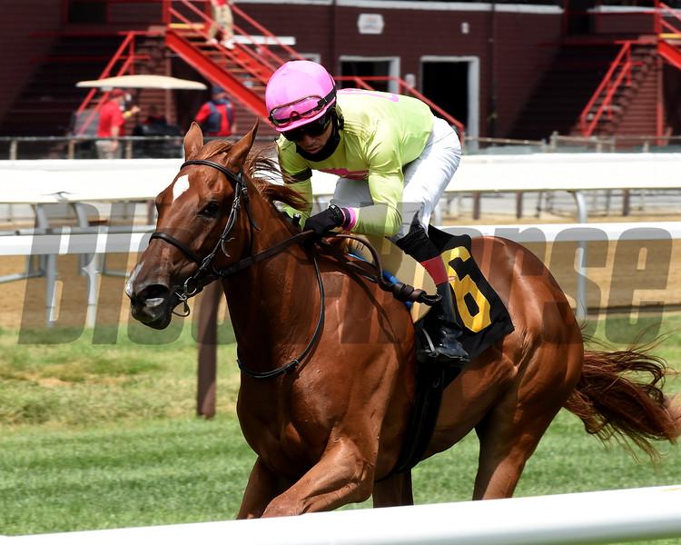 Plum Ali - Maiden Win, Saratoga, July 23, 2020<br /> Coglianese Photos/Chelsea Durand