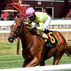 Plum Ali - Maiden Win, Saratoga, July 23, 2020<br /> Coglianese Photos/Chelsea Durand