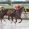Starship Mallomar - Maiden Win, Gulfstream Park, July 18, 2020<br /> Coglianese Photos/Lauren King
