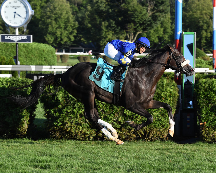Safe Conduct - Maiden Win, Saratoga, August 30, 2020<br /> Coglianese Photos