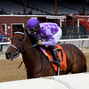 Simply Ravishing wins the 2020 P. G. Johnson Stakes at Saratoga<br /> Coglianese Photos/Chelsea Durand