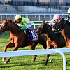 Therapist wins the 2020 Artie Schiller Stakes at Aqueduct<br /> Coglianese Photos/Joe Labozzetta