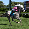 Jack and Noah wins the 2020 Mahony Stakes at Saratoga<br /> Coglianese Photos/Chris Rahayel