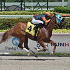 Sky Chaser - AOC, Gulfstream Park, August 15, 2020<br /> Coglianese Photos/Lauren King