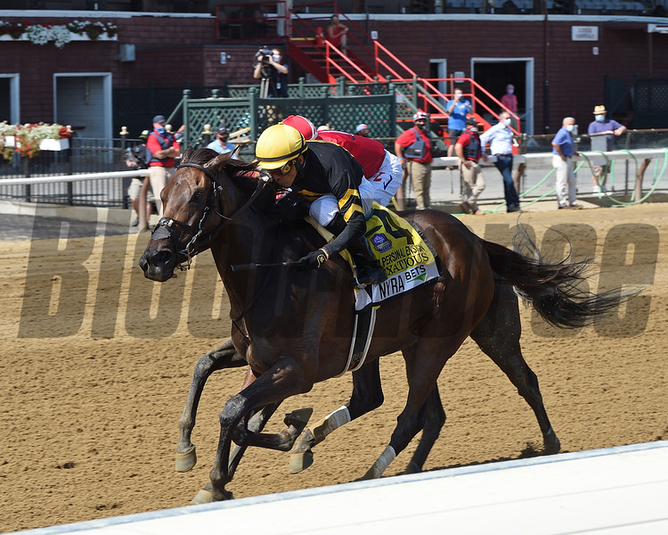 Vexatious wins the 2020 Personal Ensign Stakes at Saratoga<br /> Coglianese Photos/Chelsea Durand