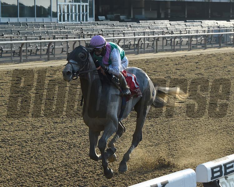 Tacitus wins the Suburban Stakes Saturday, July 4, 2020 at Belmont Park. Photo: Coglianese Photos/Chelsea Durand