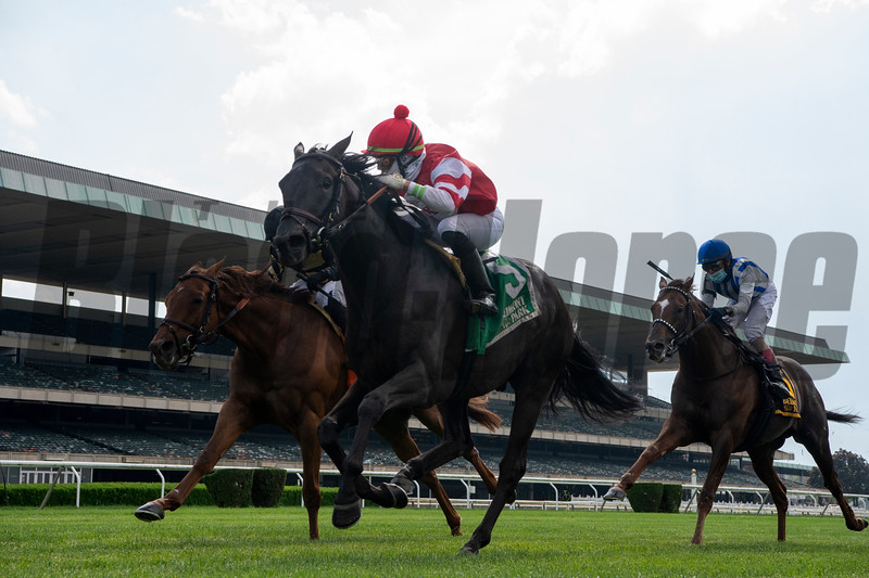 Instilled Regard wins the 2020 Fort Marcy Stakes at Belmont Park<br /> Coglianese Photos/Chelsea Durand