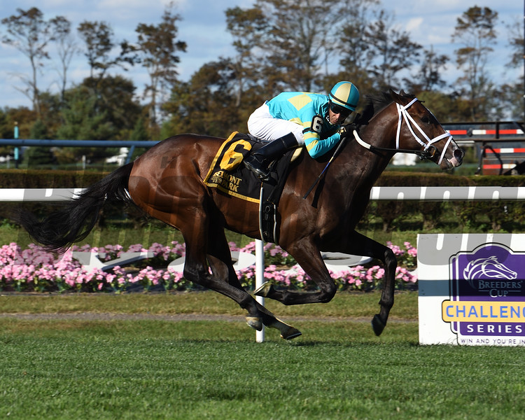 Fire At Will wins the 2020 Pilgrim Stakes at Belmont Park<br /> Coglianese Photos