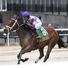 Cash Offer wins the 2020 La Verdad Stakes at Aqueduct<br /> Coglianese Photos/Elsa Lorieul
