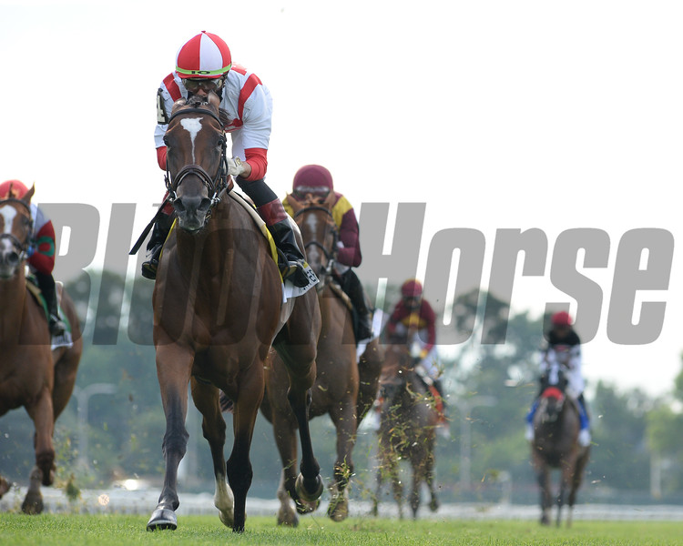 Newspaperofrecord wins the 2020 Just a Game Stakes at Belmont Park<br /> Coglianese Photos