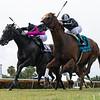Pay Any Price wins 2020 Bob Umphrey Turf Sprint Stakes at Gulfstream Park. Photo: Coglianese Photos/Ryan Thompson