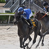 Boerne wins the 2020 Azalea Stakes at Gulfstream Park<br /> Coglianese Photos/Ryan Thompson