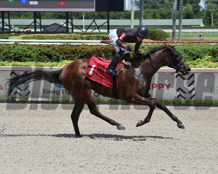 Palmgirl - Maiden Win, Gulfstream Park, August 27, 2020<br /> Coglianese Photos/Lauren King