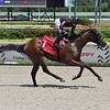 Palmgirl - Maiden Win, Gulfstream Park, August 27, 2020<br /> Coglianese Photos/Lauren King