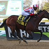 Complexity wins the 2020 Kelso Stakes at Belmont Park<br /> Coglianese Photos/Janet Garaguso
