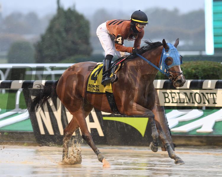 Honor Way wins the Pumpkin Pie Stakes Sunday, November 1, 2020 at Belmont Park. Photo: Coglianese Photos