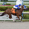 Flora Fantasy - AOC, Gulfstream Park, May 29, 2020<br /> Coglianese Photos/Lauren King