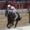 Yaupon wins the 2020 Amsterdam Stakes at Saratoga<br /> Coglianese Photos/Chelsea Durand