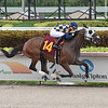 Crea's Bklyn Law - AOC, Gulfstream Park, July 11, 2020<br /> Coglianese Photos/Lauren King