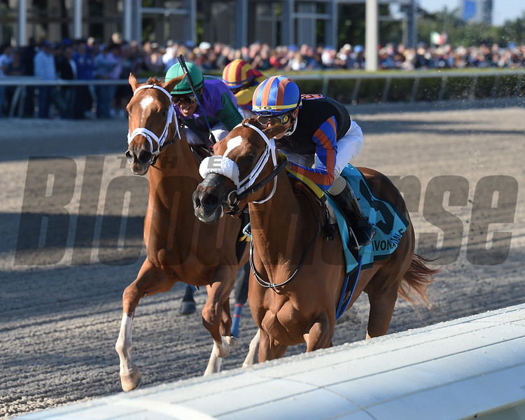 Tonalist's Shape wins the 2020 Davona Dale Stakes at Gulfstream Park<br /> Coglianese Photos/Ryan Thompson