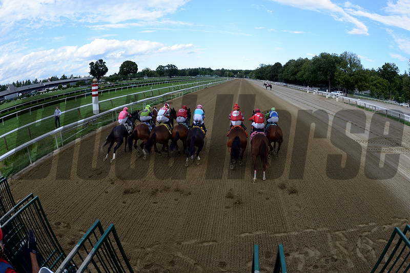 Frank's Rockette wins the 2020 Prioress Stakes at Saratoga <br /> Coglianese Photos/Chelsea Durand