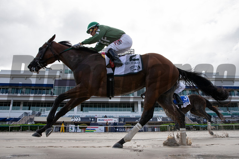 Breeze On By wins the 2020 FTBOA Florida Sire Dr. Fager Stakes at Gulfstream Park<br /> Coglianese Photos/Ryan Thompson