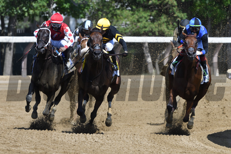 Vexatious wins the 2020 Personal Ensign Stakes at Saratoga<br /> Coglianese Photos/Elsa Lorieul