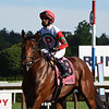 Turned Aside wins the 2020 Quick Call Stakes at Saratoga<br /> Coglianese Photos