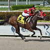 Letruska wins the 2020 Added Elegance at Gulfstream Park   <br /> Coglianese Photos/Lauren King