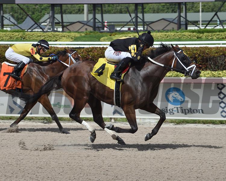 Combination wins an allowance race June 27, 2020 at Gulfstream Park. Photo: Coglianese Photos/Lauren King