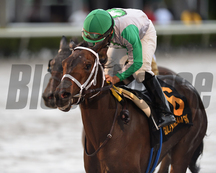 Cookie Dough wins the 2020 Royal Delta Stakes at Gulfstream Park<br /> Coglianese Photos/Ryan Thompson