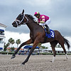 Graceful Princess - AOC, Gulfstream Park, April 24, 2020<br /> Coglianese Photos/Ryan Thompson