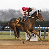 Bankit wins the 2020 Alex M. Robb Stakes at Aqueduct<br /> Coglianese Photos/Elsa Lorieul