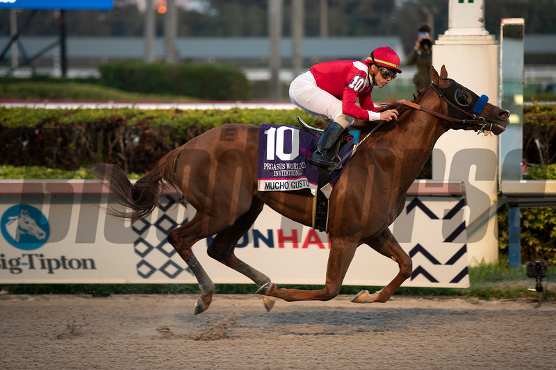 Mucho Gusto wins 2020 Pegasus World Cup Invitational at Gulfstream Park. Photo: Coglianese Photos/Ashley Blum