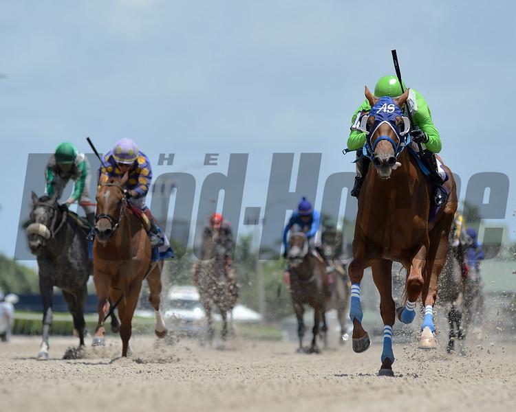 Papetu - Maiden Win, Gulfstream Park, June 20, 2020<br /> Coglianese Photos/Ryan Thompson