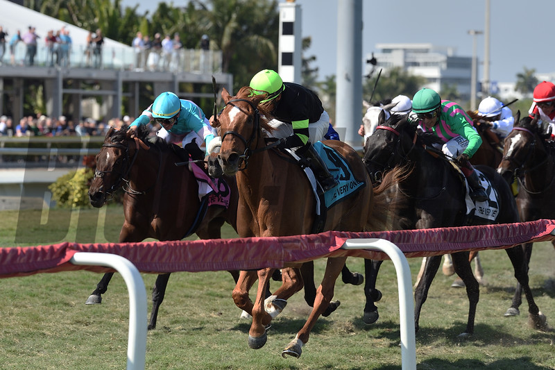 Elizabeth Way wins the 2020 The Very One Stakes at Gulfstream Park<br /> Coglianese Photos/Ryan Thompson