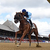 Captain Bombastic wins the 2020 New York Stallion Stakes (Times Square div)      <br /> Coglianese Photos/Chelsea Durand