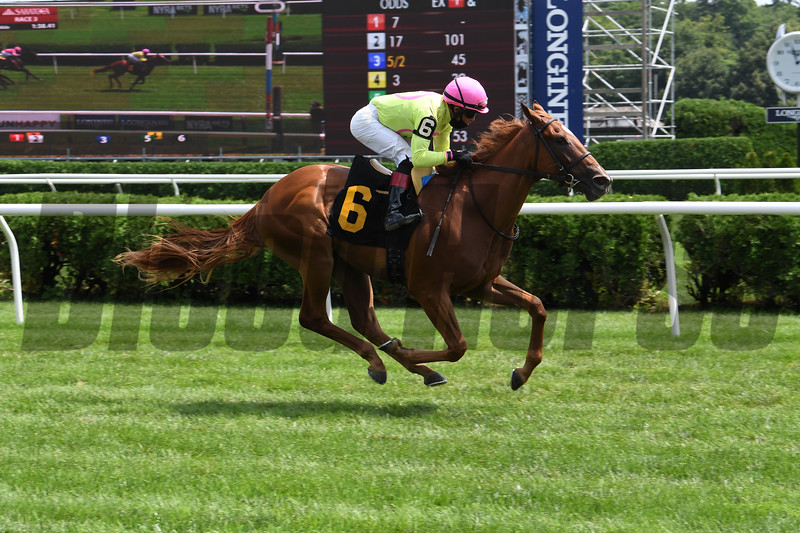 Plum Ali - Maiden Win, Saratoga, July 23, 2020<br /> Coglianese Photos