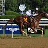 Cold Hard Cash - Maiden Win, Saratoga, July 17, 2020<br /> Coglianese Photos