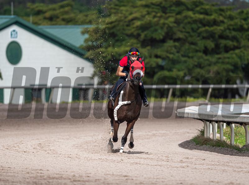 Spun to Run - Morning - Palm Meadows - 011320. Photo: Joe DiOrio