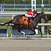 Envoutante - Maiden Win, Gulfstream Park, April 2, 2020<br /> Coglianese Photos/Lauren King