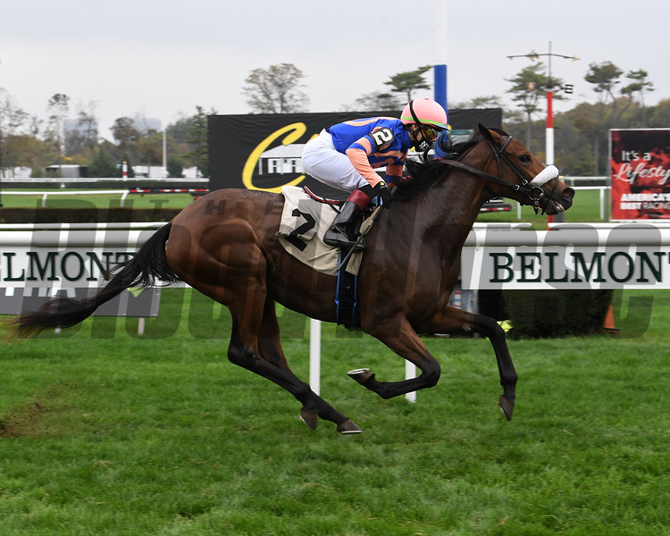 Big Time Lady - Maiden Win, Belmont Park, October 24, 2020<br /> Coglianese Photos