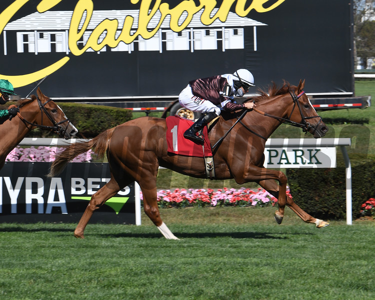 Oyster Box wins a maiden special weight Saturday, October 3, 2020 at Belmont Park. Photo: Coglianese Photos
