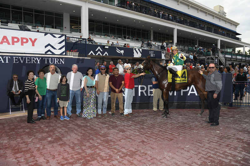 Cheermeister wins 2020 Sweetest Chant Stakes at Gulfstream Park. Photo: Coglianese Photos
