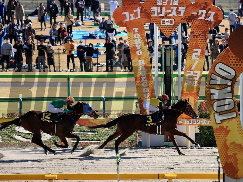 Cafe Pharoah wins the 2020 Hyacinth Stakes at Tokyo Racecourse. Photo: Naoji Inada